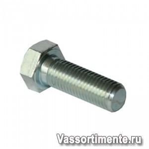 Болт нержавеющий М2,5х8 мм А4 DIN 933
